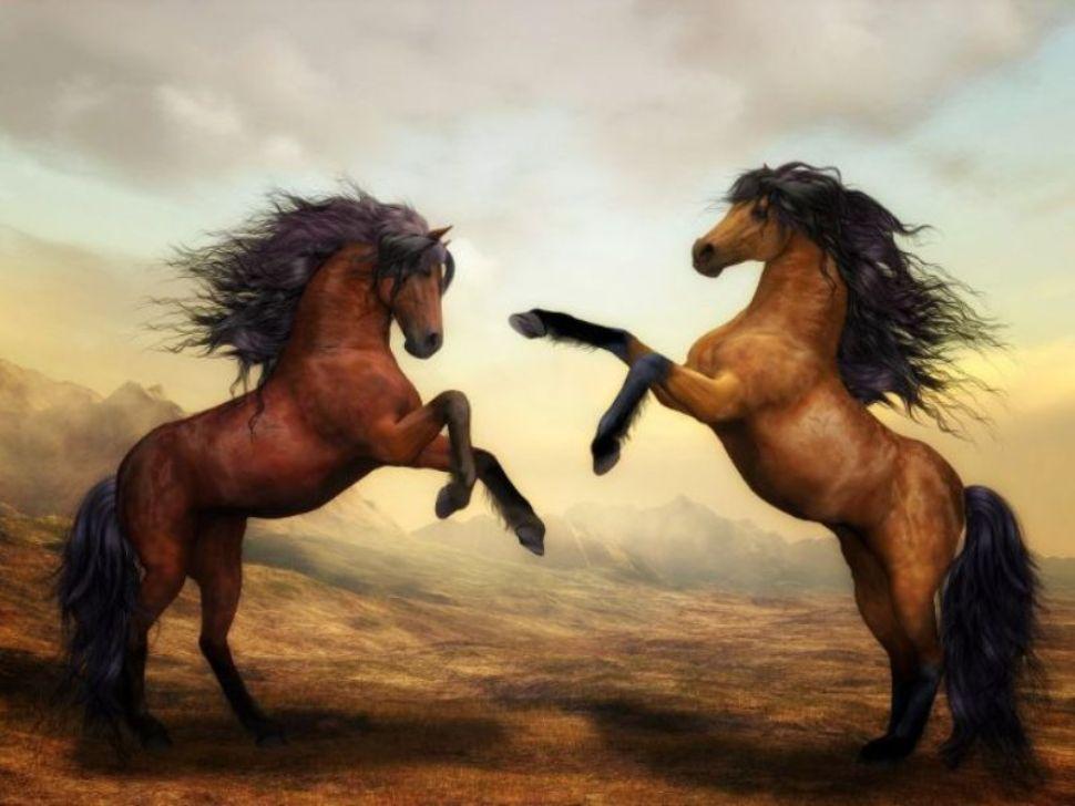 Soñar con caballos agresivos