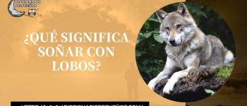 Soñar con Lobos- ¡Un Sueño Salvaje!