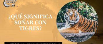 Soñar con Tigres - ¡Un Sueño Protector!