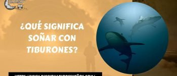 Soñar con Tiburones- ¡Un Sueño Mortal!